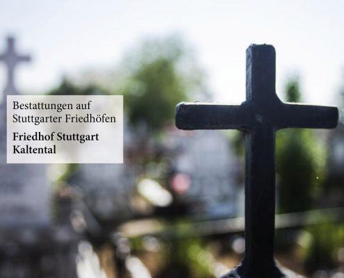 Friedhof Stuttgart Kaltental_Fulrich-Niederberger_123rf-colorwaste