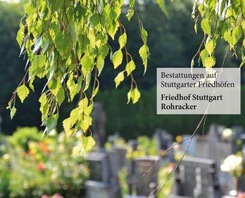 Friedhof Stuttgart Rohracker_neu_Fulrich-Niederberger_123rf-Martina Vaculikova
